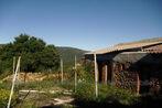Sale Land 2 500m² Oms (66400) - Photo 10