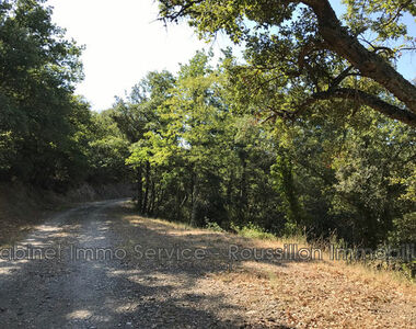 Sale Land 8 380m² Reynès (66400) - photo