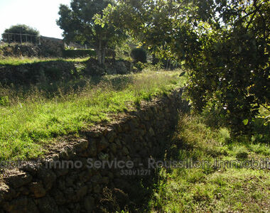Sale Land 2 500m² Oms (66400) - photo