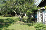 Vente Maison 5 pièces 102m² Serralongue (66230) - Photo 10
