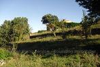 Sale Land 2 500m² Oms (66400) - Photo 7