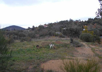 Vente Terrain 7 878m² Céret (66400) - photo