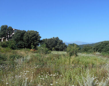 Sale Land 1 442m² Oms - photo
