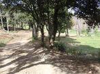 Sale Land 1 247m² Taillet - Photo 7
