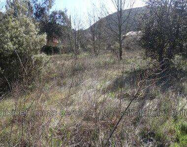Sale Land 3 058m² Reynès (66400) - photo