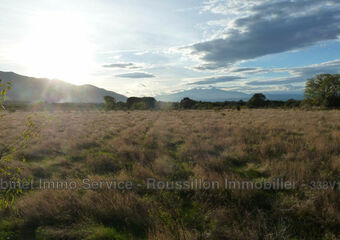 Sale Land 3 800m² Saint-André (66690) - photo