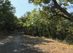 Sale Land 8 380m² Reynes - Photo 5