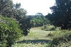 Sale Land 1 442m² Oms - Photo 9