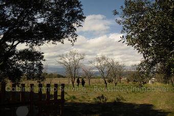 Vente Terrain 2 750m² Maureillas-Las-Illas - photo