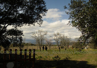 Vente Terrain 2 750m² Maureillas-Las-Illas - photo