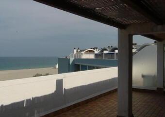 Location Appartement 2 pièces Saint-Cyprien Plage (66750) - photo