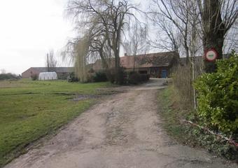 Vente Maison 7 pièces 195m² Wormhout - photo