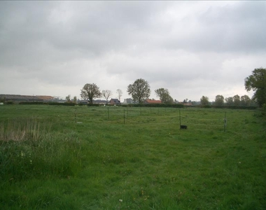 Vente Terrain Broxeele (59470) - photo