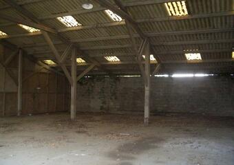 Vente Fonds de commerce 1 000m² Wormhout (59470) - photo