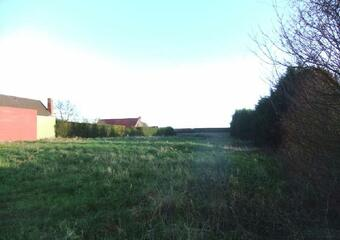 Vente Terrain Ledringhem (59470) - photo