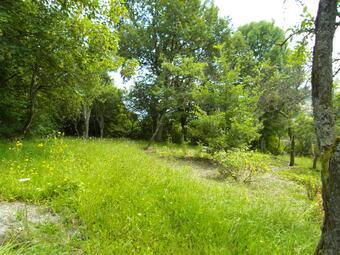 Vente Terrain 1 100m² Charmes-la-Côte (54113) - photo