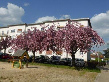 Vente Appartement 3 pièces 54m² Villiers-sur-Marne (94350) - photo
