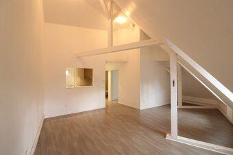 Location Appartement 2 pièces 55m² Strasbourg (67000) - photo