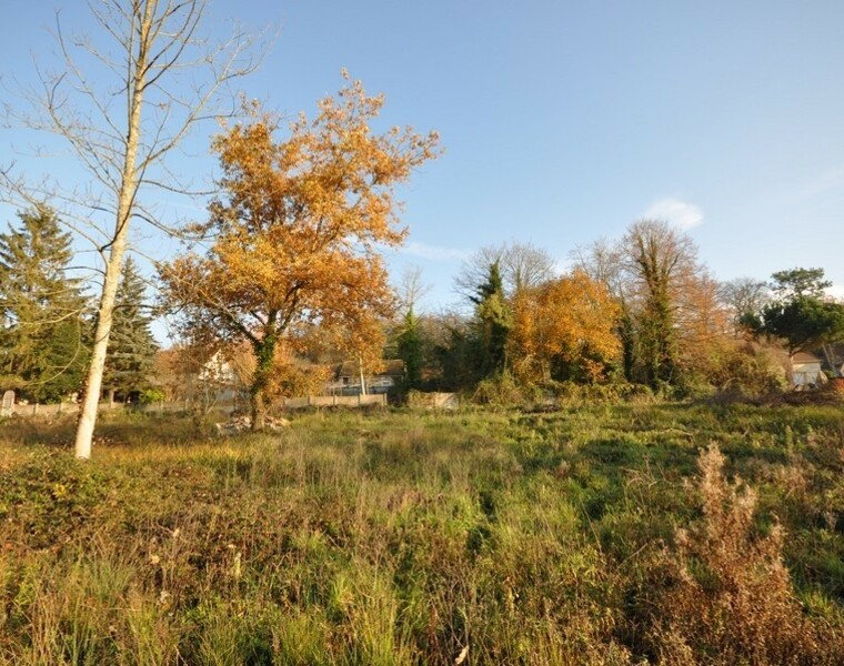 Vente Terrain Saint-Yon (91650) - photo