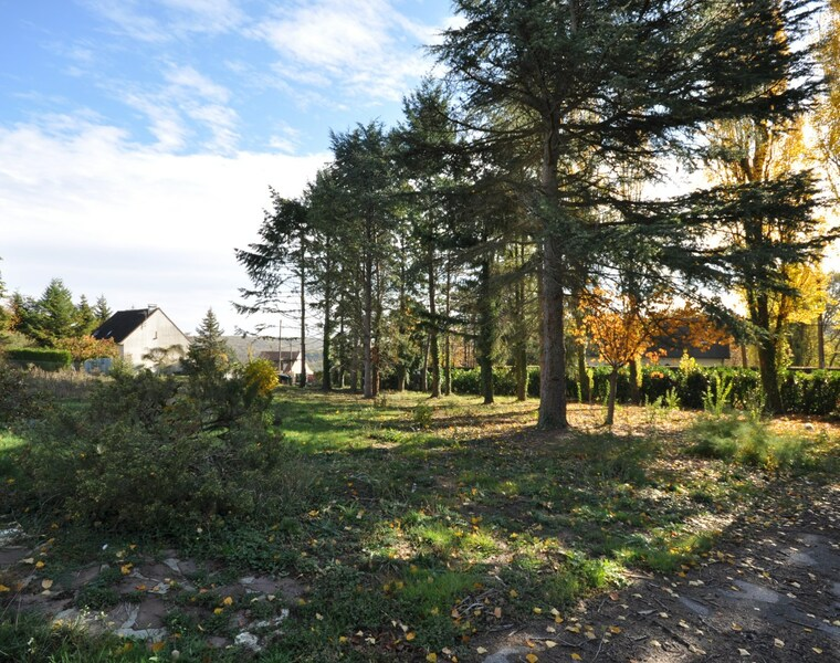 Vente Terrain Courson-Monteloup (91680) - photo