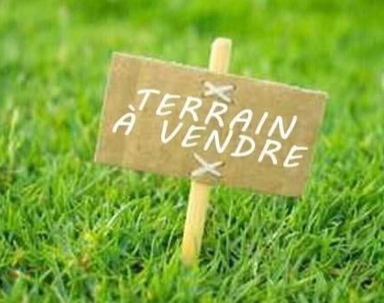 Vente Terrain Boissy-sous-Saint-Yon (91790) - photo