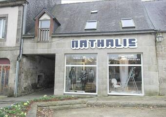 Vente Fonds de commerce 170m² Guerlesquin (29650) - photo