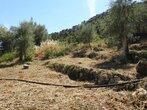 Vente Terrain Nice (06000) - Photo 4