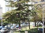 Vente Appartement 2 pièces 40m² Nice (06300) - Photo 1