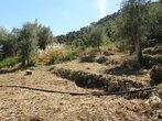 Vente Terrain Nice (06000) - Photo 3