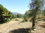 Vente Terrain Nice (06000) - Photo 2