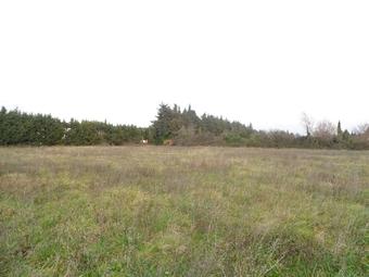 Vente Terrain 410m² Loriol-du-Comtat (84870) - photo