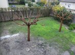 Renting House 5 rooms 124m² Monteux (84170) - Photo 2