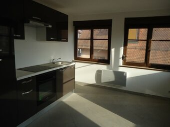 Location Appartement 3 pièces 62m² Ebersheim (67600) - Photo 1