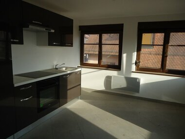 Location Appartement 3 pièces 62m² Ebersheim (67600) - photo