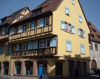 Location Appartement 2 pièces 71m² Sélestat (67600) - photo