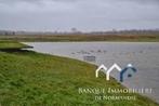 Vente Terrain 25 000m² Bayeux (14400) - Photo 1