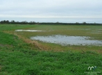 Vente Terrain 25 000m² Bayeux (14400) - Photo 2