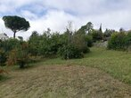 Sale Land Goyrans (31120) - Photo 1