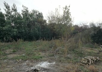 Sale Land La Salvetat-Saint-Gilles (31880) - photo