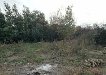 Sale Land 390m² La Salvetat-Saint-Gilles - photo
