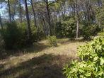 Vente Terrain 868m² Trans-en-Provence (83720) - Photo 5