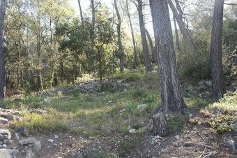 Vente Terrain 20 420m² Trans-en-Provence (83720) - Photo 1