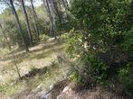 Vente Terrain 863m² Trans-en-Provence (83720) - Photo 3