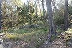 Vente Terrain 1 590m² Trans-en-Provence (83720) - Photo 3