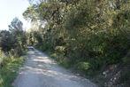 Vente Terrain 1 590m² Trans-en-Provence (83720) - Photo 4