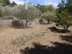 Vente Terrain Trans-en-Provence (83720) - Photo 2