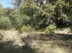 Vente Terrain 868m² Trans-en-Provence (83720) - Photo 3