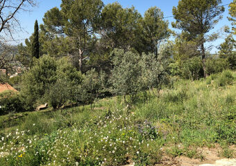 Vente Terrain 1 110m² Draguignan (83300) - Photo 1