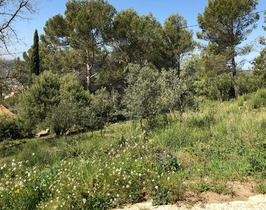 Vente Terrain 1 110m² Draguignan (83300) - photo
