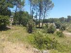 Vente Terrain 786m² Trans-en-Provence (83720) - Photo 3